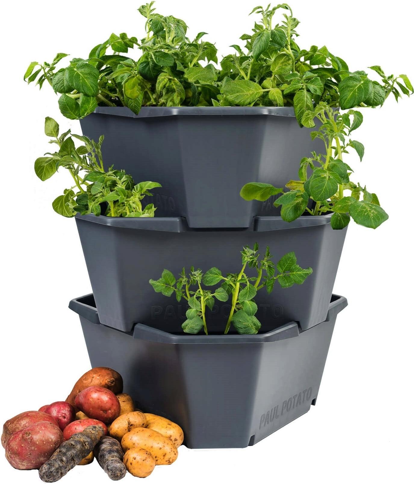 Nádoba na pěstování brambor, 3 patra